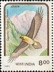 Lammergeier on a Indian postage stamp of 1992.