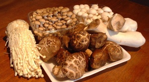Collection of medicinal mushrooms including Enoki, King Oyster mushrooms, and Shiitake.